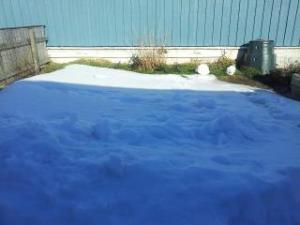 Min trädgård med komposttunnan tagen förran veckan - nu är snön borta.