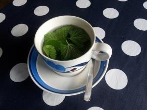 Te av färska svartvinbärsblad
